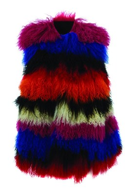 Colorful Fur Gilet