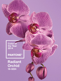 Color of the Year 2014: Radiant Orchid