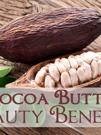 Important Beauty Uses of Cocoa Butter