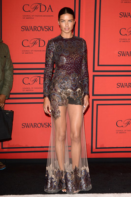 Adriana Lima Dress 2013 Cfda Fashion Awards