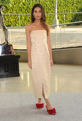 Lily Aldridge Dress 2013 Cfda Fashion Awards
