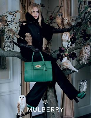 Look From The New Mulberry Fall 2013 Campaign