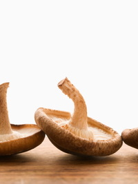 Mushroom Diet: Weight Loss Miracle or Fad Diet?