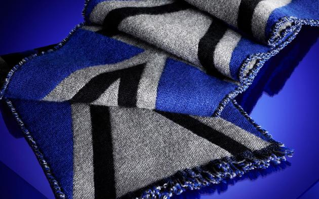 Burberry Accessories Fall Winter 2013 (9)
