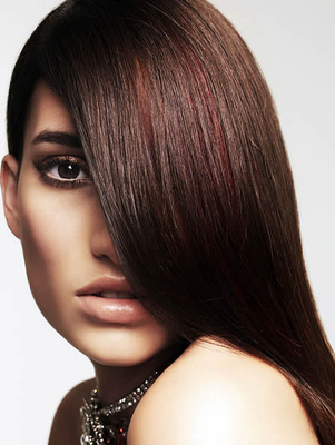Brown Hair With Dark Red Highlights