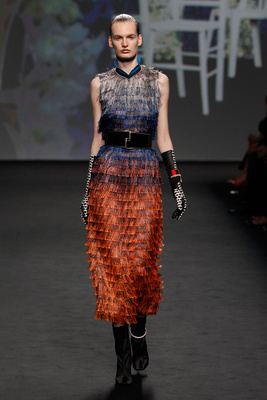 Dior Couture Autumn Winter 2013 Look 9