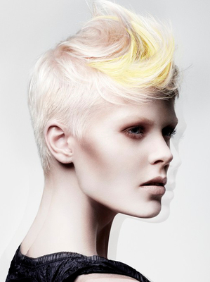 Short Punk Hairstyle With Long Top Layers