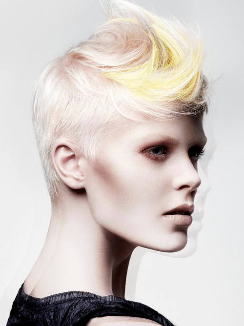 Pictures : New Short Punk Hairstyles for Women - Short Punk Hairstyle ...