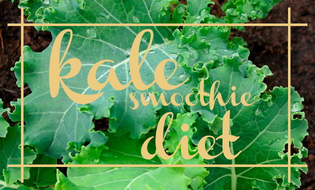 The Secret to Losing Weight with a Kale Smoothie Diet