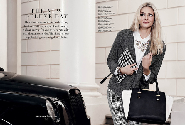 Accessorize Fall Winter 2013 Bag And Necklace