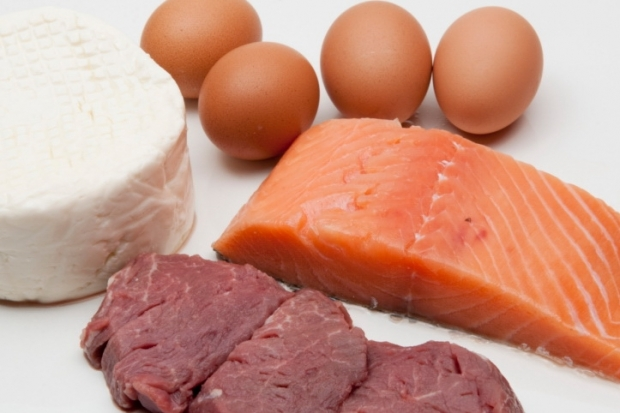 High Protein, Low Carb Diets