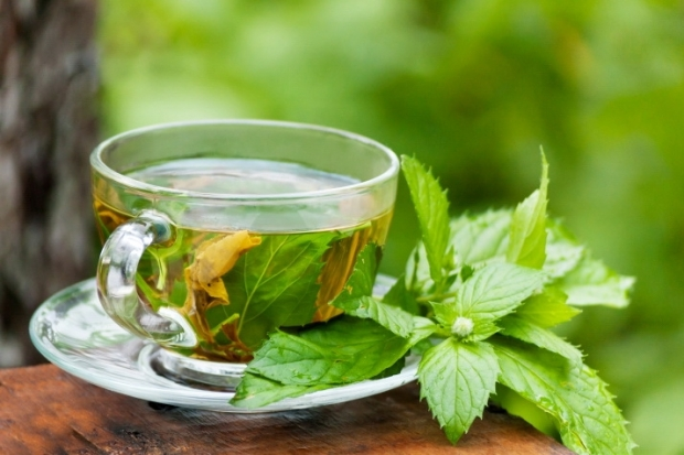 Detox Tea – Types and Benefits