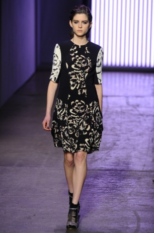 Rebecca Taylor Fall 2013 Collection