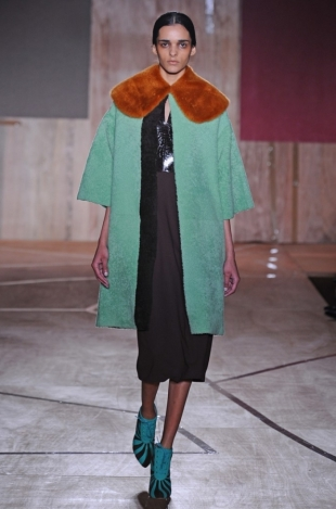 Roksanda Ilincic Fall 2013 Collection