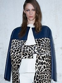Celine at Paris Fashion Week Fall 2013
