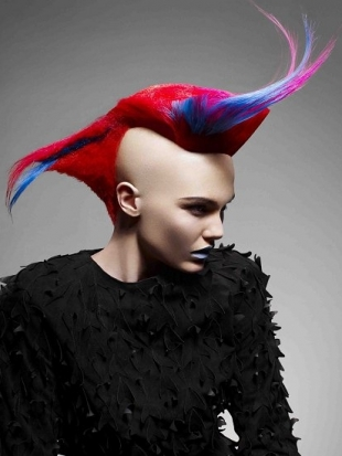 Wondrous Girl Mohawk Hairstyles Trends And Ideas Schematic Wiring Diagrams Amerangerunnerswayorg