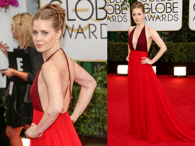 Amy Adams 2014 Golden Globes Dress