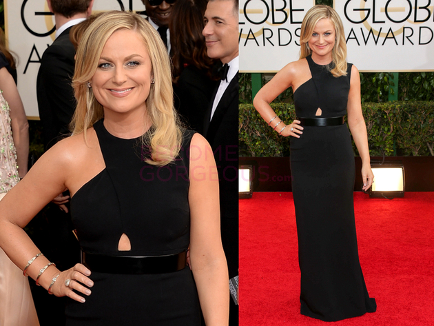 Amy Poehler 2014 Golden Globes Dress