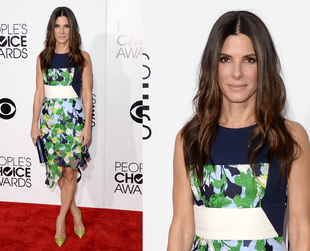 Take a look at the most interesting People's Choice Awards 2014 red carpet looks and pick your favorites!