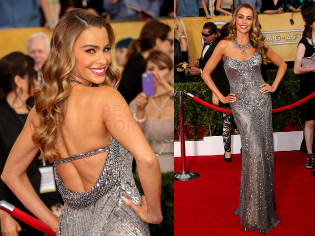 Sofia Vergara 2014 Screen Actors Guild Awards