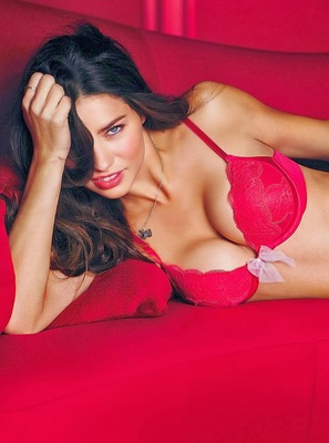 Victorias Secret Valentines Day 2014 Lingerie Look  (14)