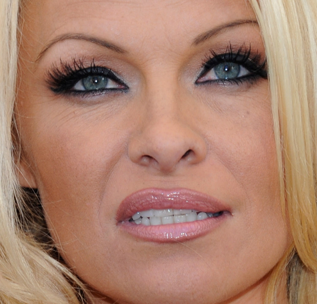 Pamela Anderson Eyebrows