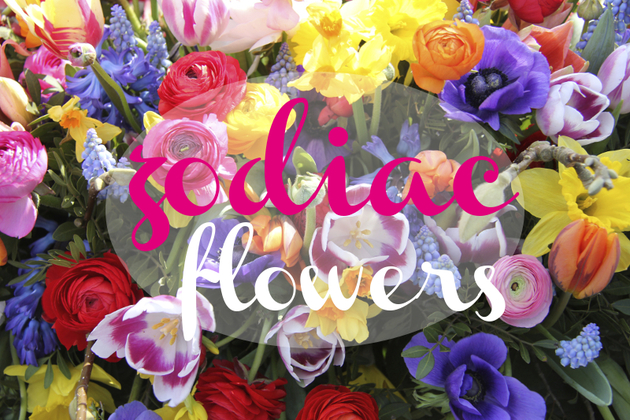 Flowers for Your Zodiac Sign