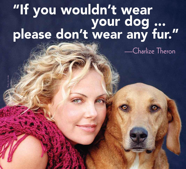 Fur Belong To Animals