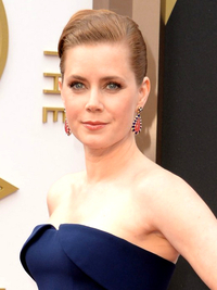 Amy Adams Oscars Hairstyle 2014