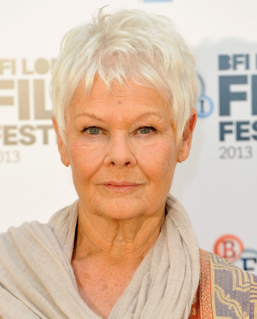 Pictures Celebrities With Gray Hair Judy Dench Gray Hair Color