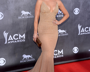 Have a glimpse of the best highlights from the Academy of Country Music Awards 2014 red carpet and pick your favorite looks.