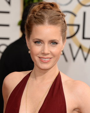 Amy Adams Updo