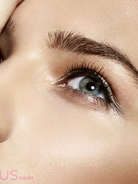 Best Products for Eyebrows