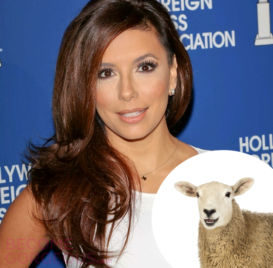 Eva Longoria Sheep Placenta Cream
