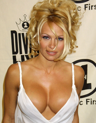 Pamela Anderson Sexy Dress