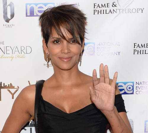 Halle Berry College Degree