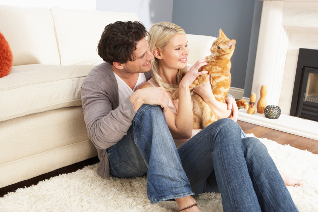 Questions To Ask Before Getting Pet In Relationship