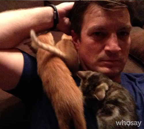 Nathan Fillion Cat Lover