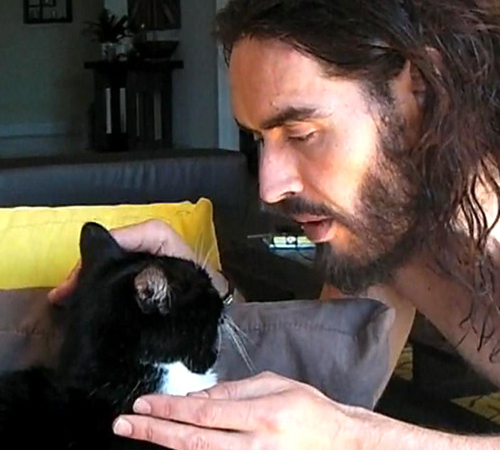 Russell Brand Cat Lover