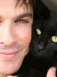 Male Celebrities Who Love Cats