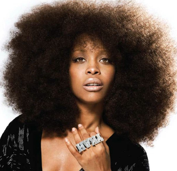Erykah Badu Natural Hair