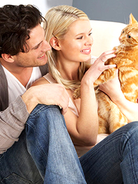 Should You Get a Pet Together as a Couple?