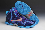 Lebron-11-0801010-01-summit-lake-hornets-purple-silver-blue