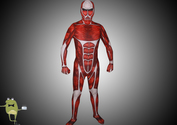 Attack-on-titan-colossal-titan-cosplay-suit