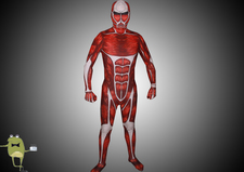 Attack-on-titan-colossal-titan-cosplay-suit_large