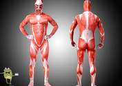 Attack-on-titan-colossal-titan-cosplay-body-suit-costume